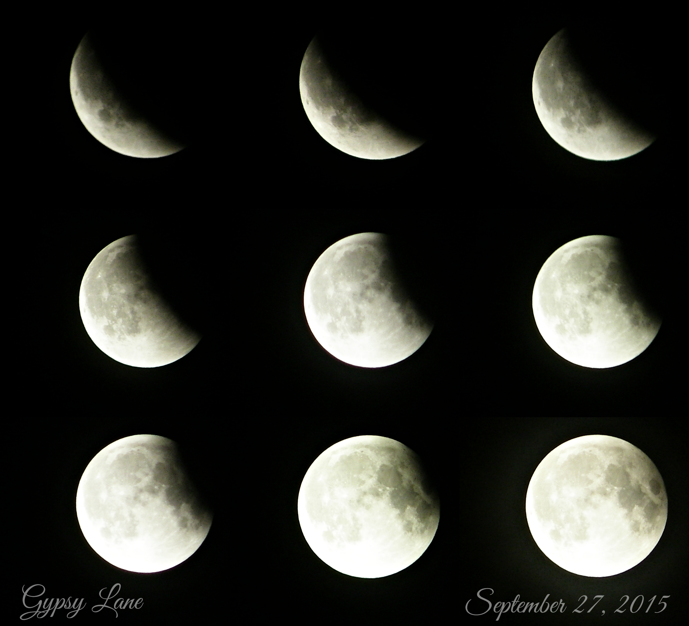 lunar eclipse - watermark